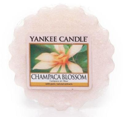 YANKEE CANDLE VONNÝ VOSK DO AROMA LAMPY 22 G CHAMPACA BLOSSOM 1 KS